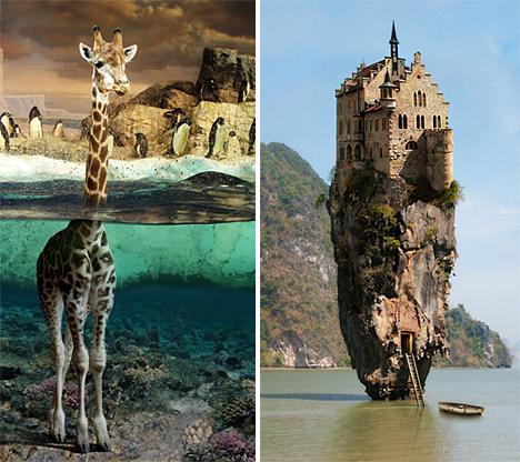 Jan Oliehoek Giraffe and Dream Home