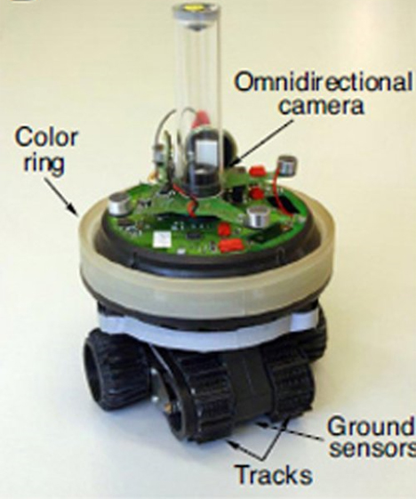 Evolving lying robot