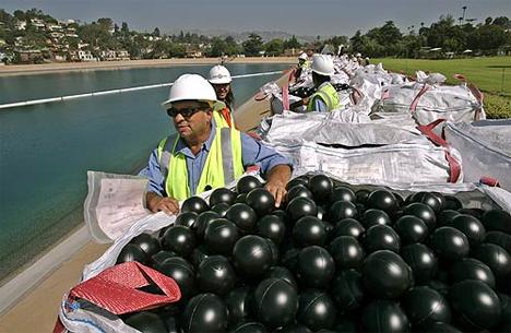 Ivanhoe reservoir black balls bromate