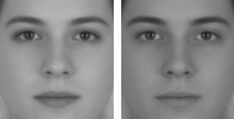 illusion of sex increased facial contrast