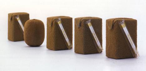 kiwi fruit juice packaging concept naoto fukusawa