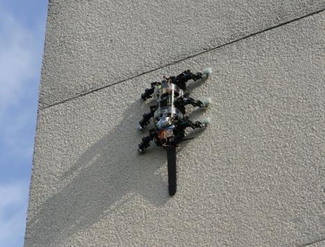 rise climbing robot