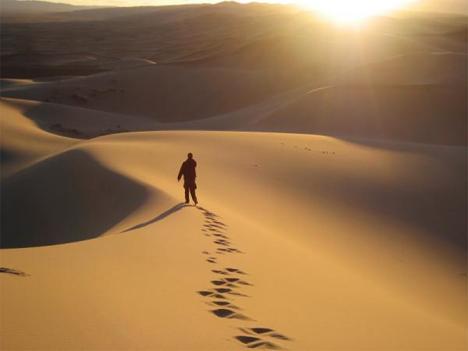 wandering in desert