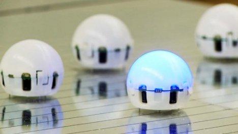 droplet swarming robots