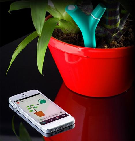 flower power wireless houseplant sensor