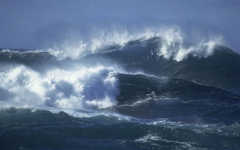 ocean crust ecosystem