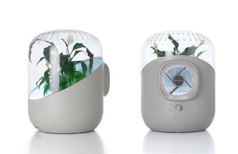 air purifier uses plant to clear air