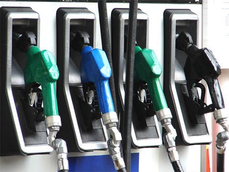 e coli biofuel could replace gasoline