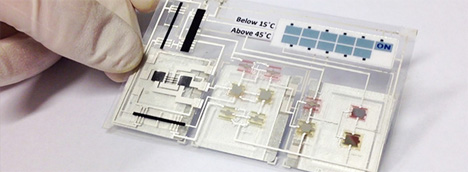temperature sensing labels