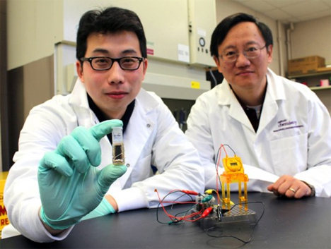 biodegradable batteries powered by sugar