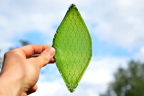 julian melchiorri silk leaf photosynthetic bio leaf