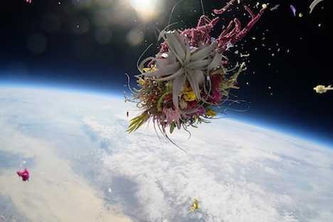 bouquet disintegrating in space