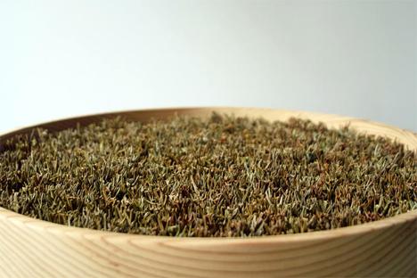 japanese cedar boughs clock