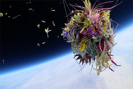 orchid bouquet falling apart in space