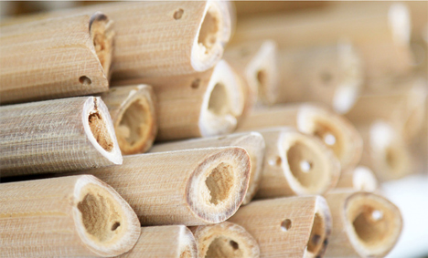 bamboo pieces