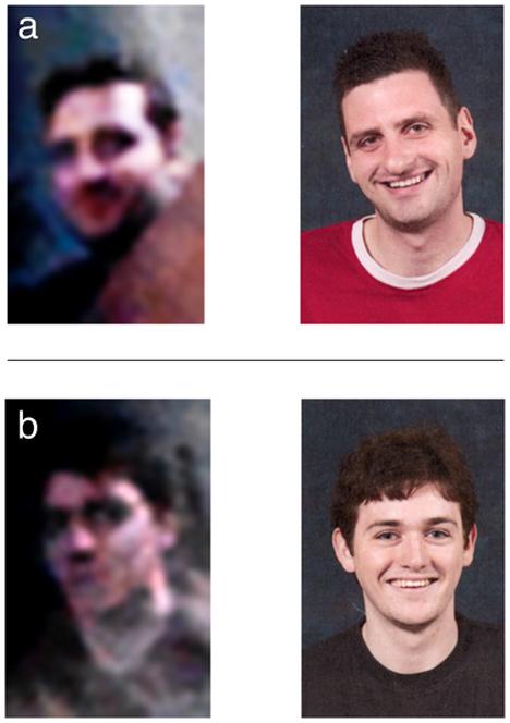 comparison photos