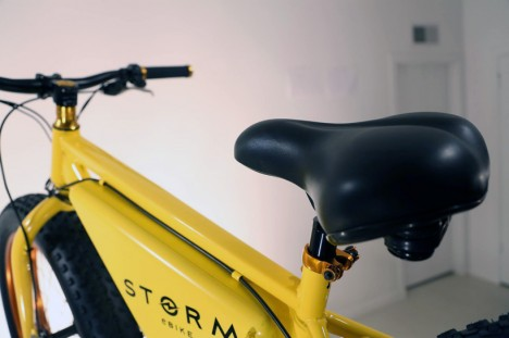 swappable battery electric bike