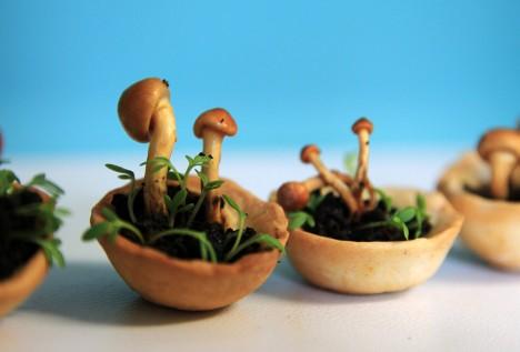 edible 3d printed mushrooms