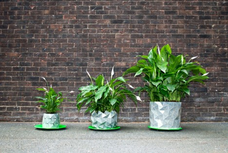 growth platner grows plants