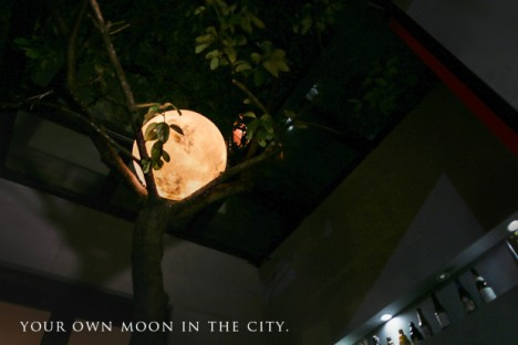moon in the city