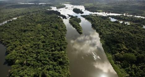 amazonian reef